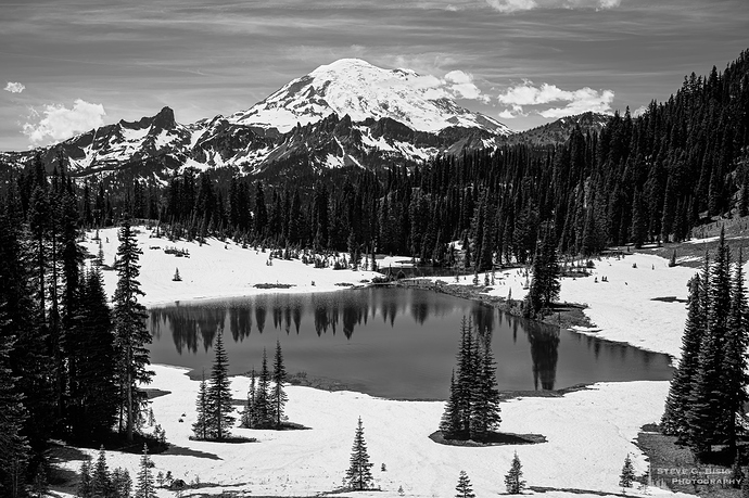 mount-rainier-from-tipsoo-lake-washington-2019