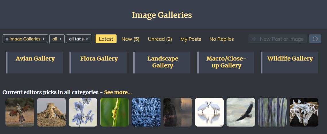 Image%20Gallery%20Screen