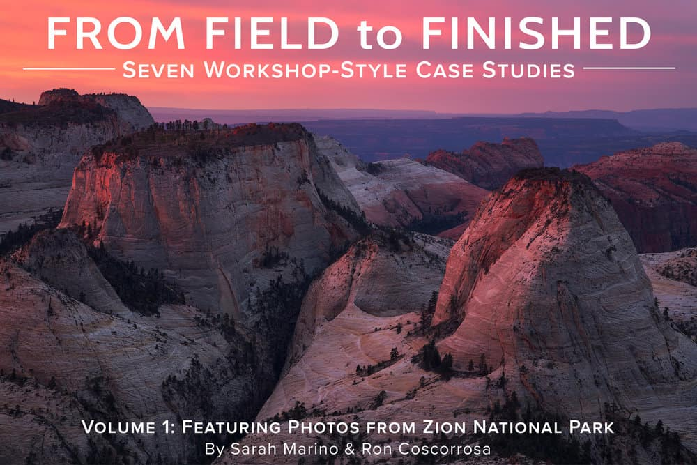 Field To Finished Zion Cover 1500px